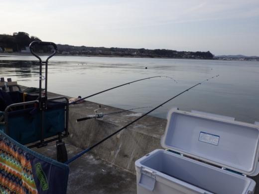 金田漁港 (24)