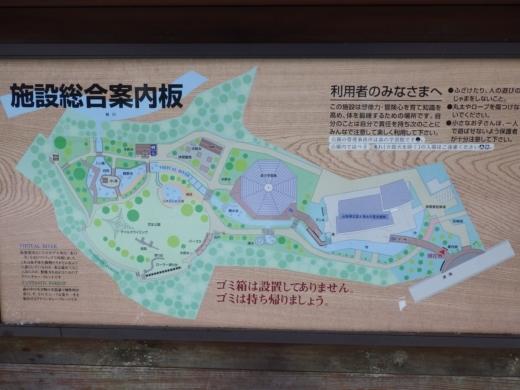 森の中の水族館 (12)