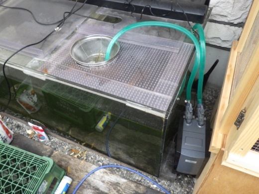 濾過機セット (5)