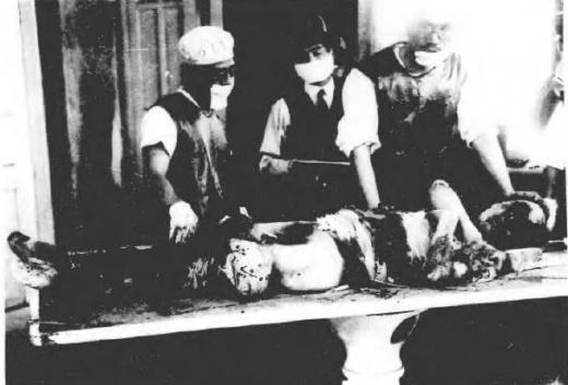 済南事件日本人惨殺遺体1