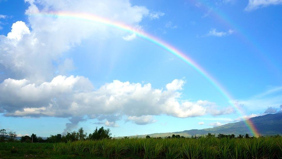 170312虹と復興