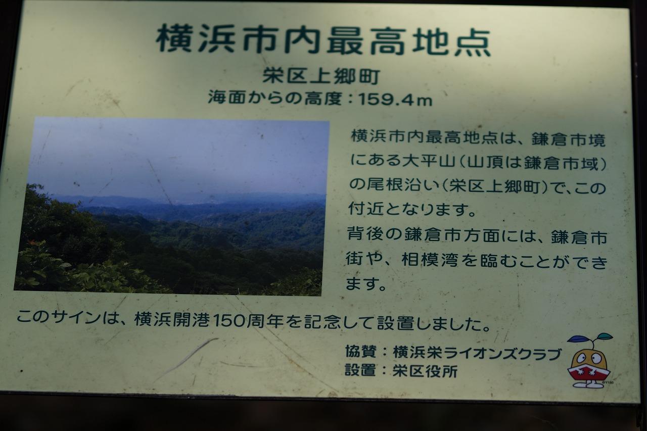 s-DSC06382.jpg