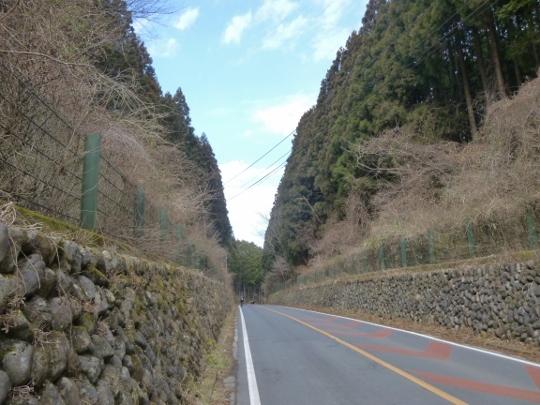 17_02_25-09shoumaru.jpg