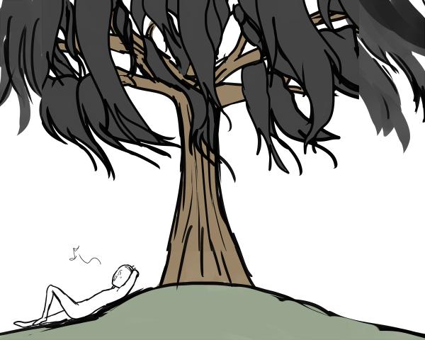 髪の毛の木