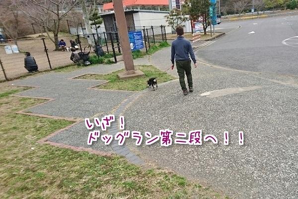 20170306133150d03.jpg