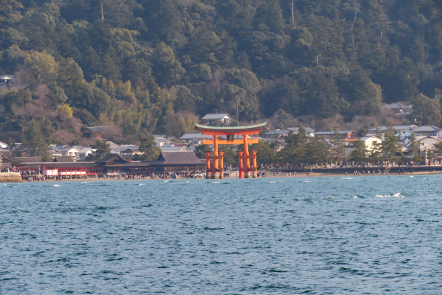 広島6(17)