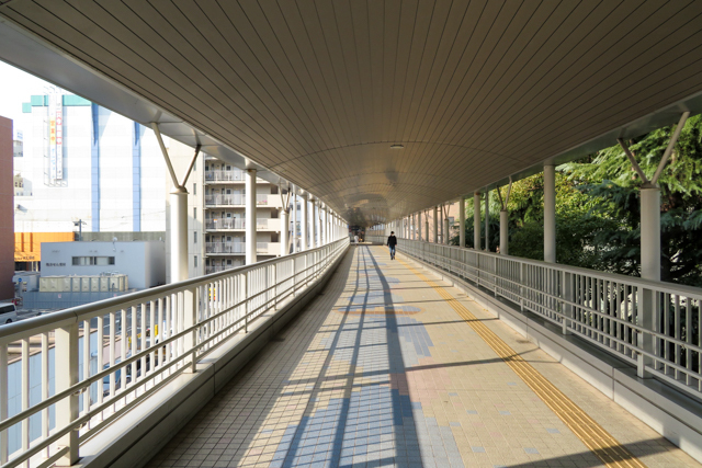 広島7(9)