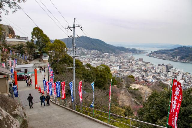 広島9(14)