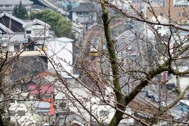 広島9(15)