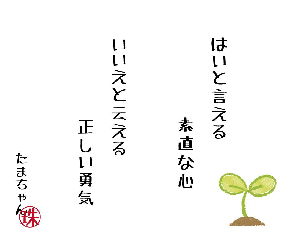 20170320122937d09.jpg