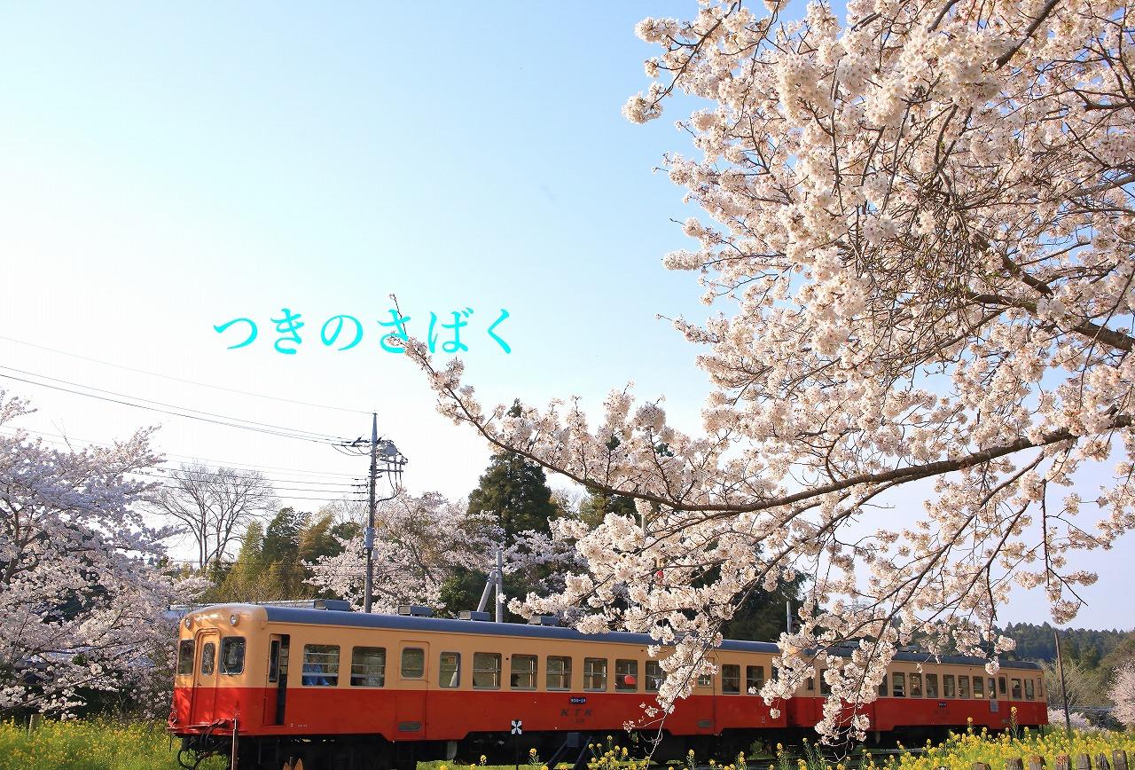 IMG_5457f5200_1.jpg