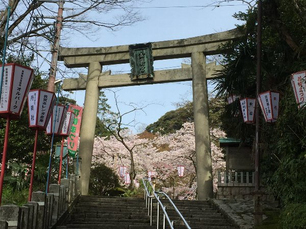 kanakasakigu2-tsuruga-015.jpg