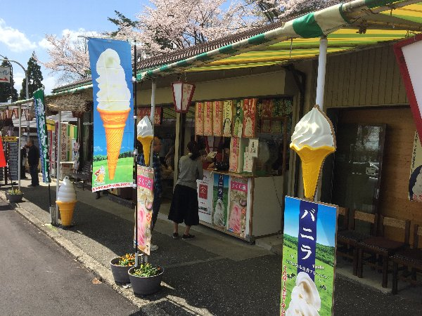 okubiwako-sakura-024.jpg
