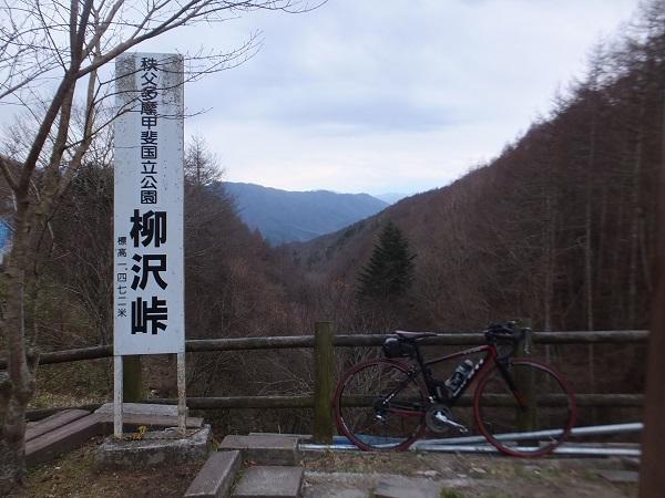 DSCF4146.jpg