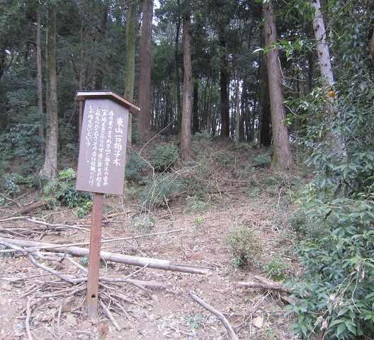 daichuji06.jpg