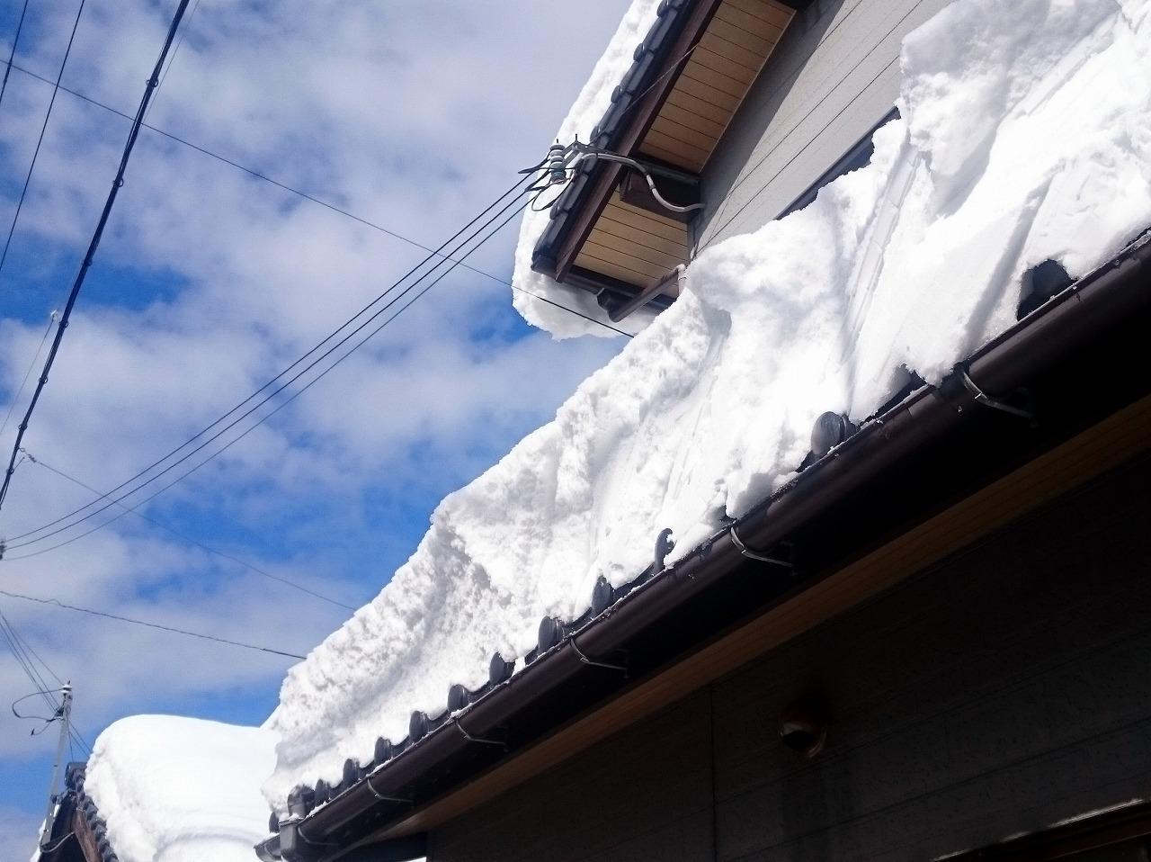 20170212-Snow-X01.jpg