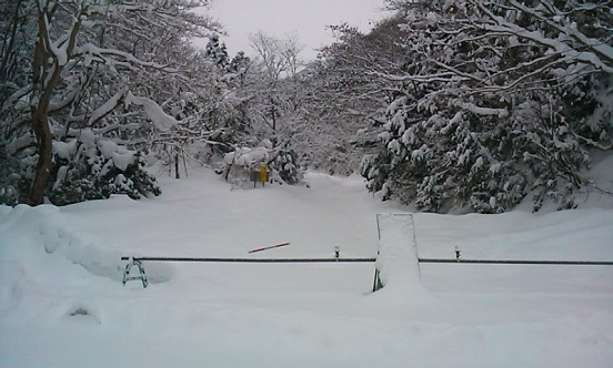 冬季閉鎖中