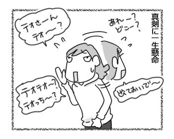 02032017_cat1.jpg