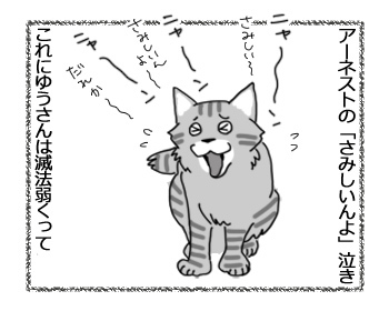 03032017_cat1.jpg