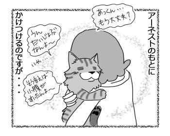 03032017_cat5.jpg