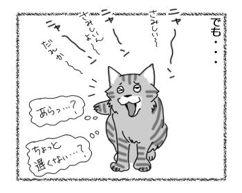 03032017_cat6.jpg