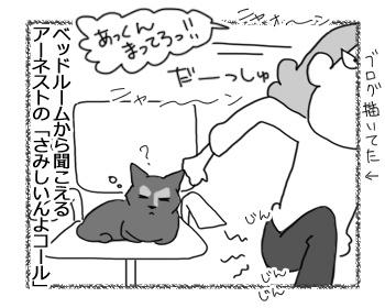 05042017_cat1.jpg