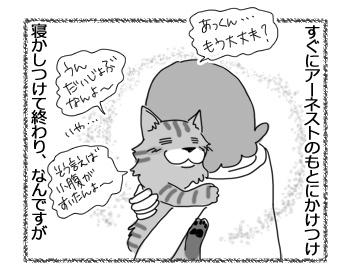 05042017_cat2.jpg