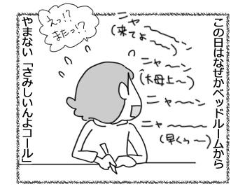 05042017_cat3.jpg