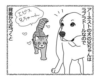 08032017_cat1.jpg