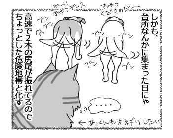 08032017_cat3.jpg