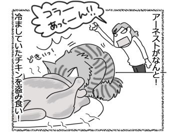 10042017_cat1.jpg
