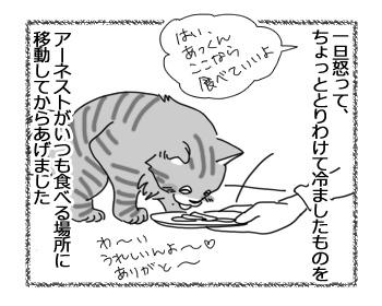 10042017_cat2.jpg