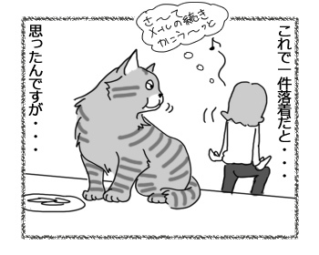 10042017_cat3.jpg