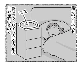 13022017_cat1.jpg