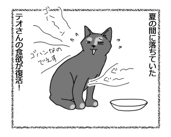 14042017_cat1.jpg