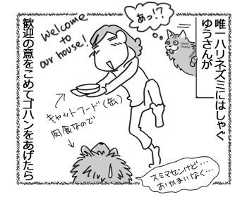 19042017_cat3.jpg