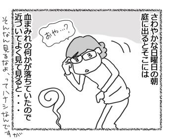20022017_cat1.jpg