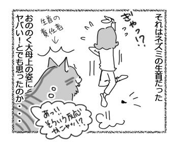 20022017_cat2.jpg