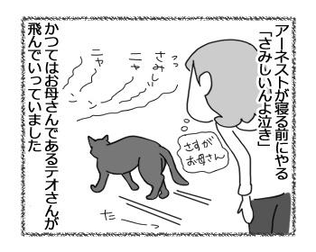 20032017_cat1m.jpg