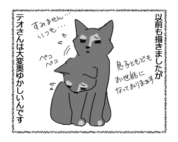 21032017_cat1.jpg