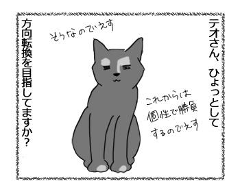 21032017_cat6.jpg