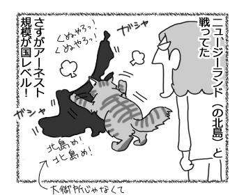 22032017_cat4.jpg