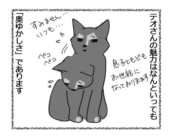 23022017_cat1.jpg