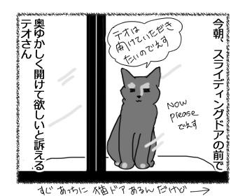 23022017_cat2.jpg