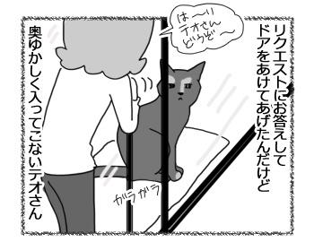 23022017_cat3.jpg