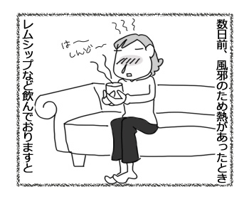 23032017_cat1.jpg
