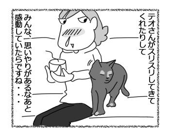 23032017_cat3.jpg