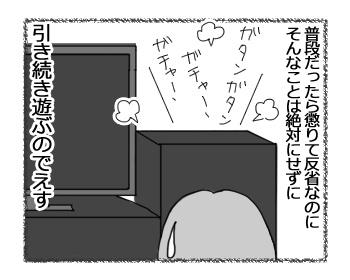 24032017_cat4.jpg
