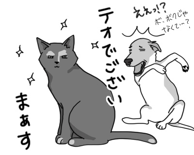 26032017_cat1.jpg
