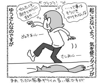 29032017_cat2.jpg